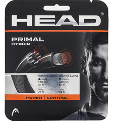 Head Primal (set) 16 AN