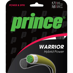 Prince Warrior Hybrid Power (12,2 м)