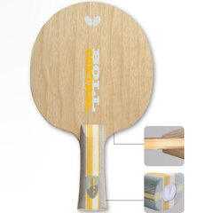Butterfly Timo Boll Control