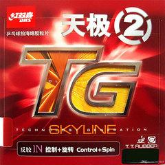 DHS Skyline-TG2
