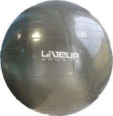 LiveUp Yoga BallL 65 см