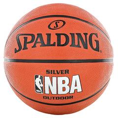 Spalding Silver NBA