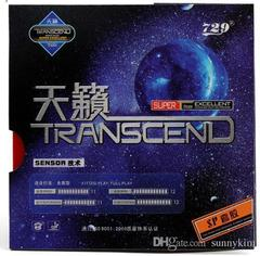 729 Transcend Sponge